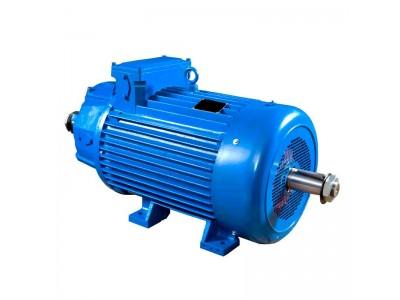 Электродвигатель 4МТКМ 225 L6 55/925 кВт/об
